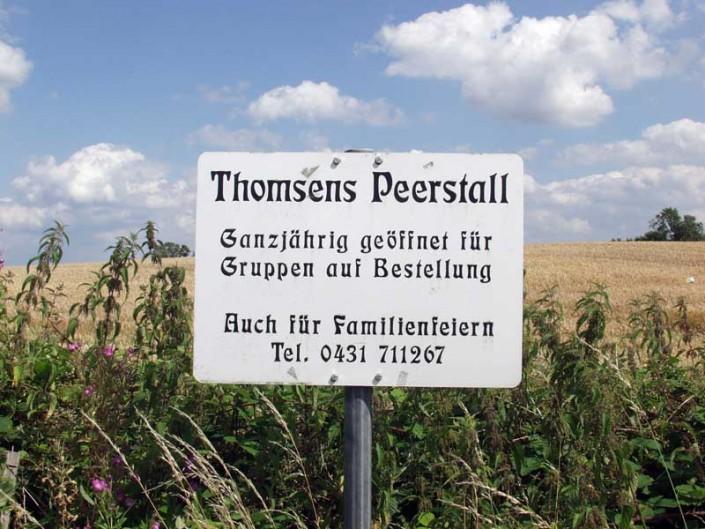 Bilder Thomsens Peerstall Juli 2009