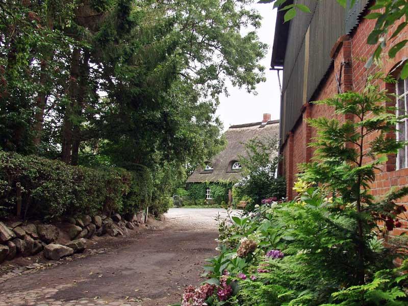Bilder Thomsens Peerstall September 2009