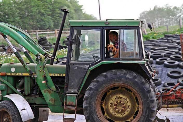 Fotos Thomsens Farm Mai 2011